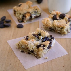 Coconut-Choc-Chip-Bars square1