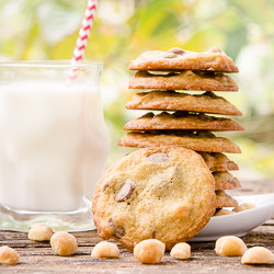 Macadamia Nut Chocolate Chips Cookies 2-250px